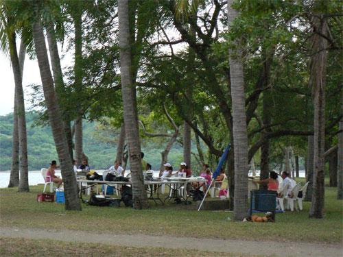 Ticos y ticas de picnic